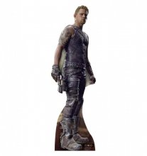Caine Wise Cardboard Standup