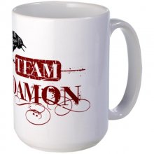 Vampire Diaries Team Damon Mug